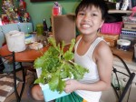 my son and our hydroponic lettuce